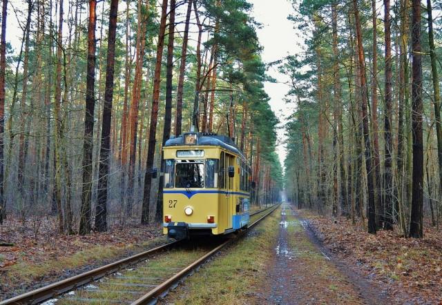 tram-585916_1280