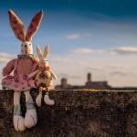 Man Jungle e gli uomini da evitare: il coniglio relazionale